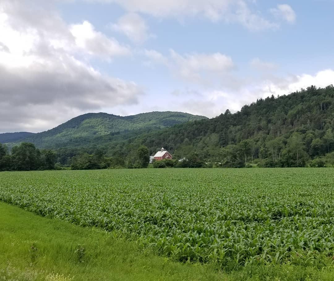 Liberty Hill Farm, Rochester, Vermont | Farm Stay USA