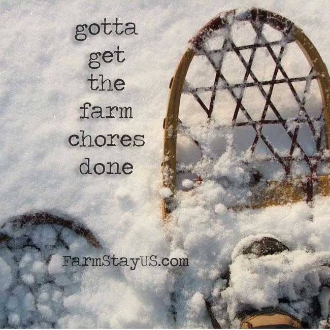 snow day chores