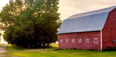 Picturesque view of a red barn at a Farm Stay.