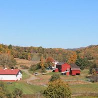 Welcome to Blind Buck Valley Farmstead!