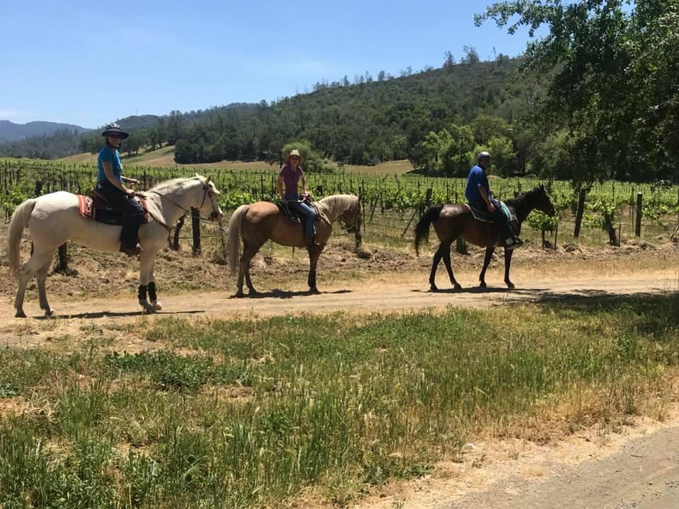 Rustridge Ranch and Winery St Helena CA | Farm Stay USA
