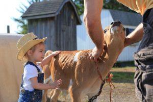 Hull-O Farms, Durham, New York | Farm Stay USA