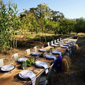 Beltane Ranch, Glen Ellen, California   Farm Stay USA