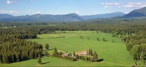 Cedar Mountain Farm, Athol, Idaho   Farm Stay USA
