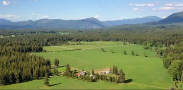 Cedar Mountain Farm, Athol, Idaho | Farm Stay USA