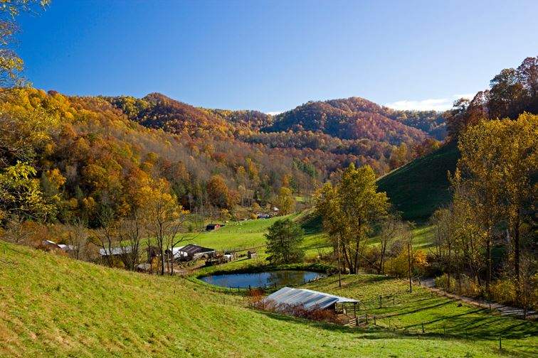 East Fork Farm & Cottages, Marshall, North Carolina | Farm Stay USA