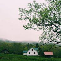 Pioneer House in mist
