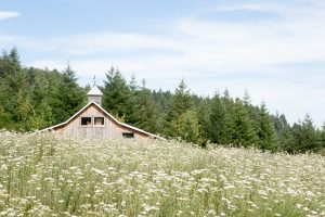 Jean Marie's Garden White Salmon WA | Farm Stay USA