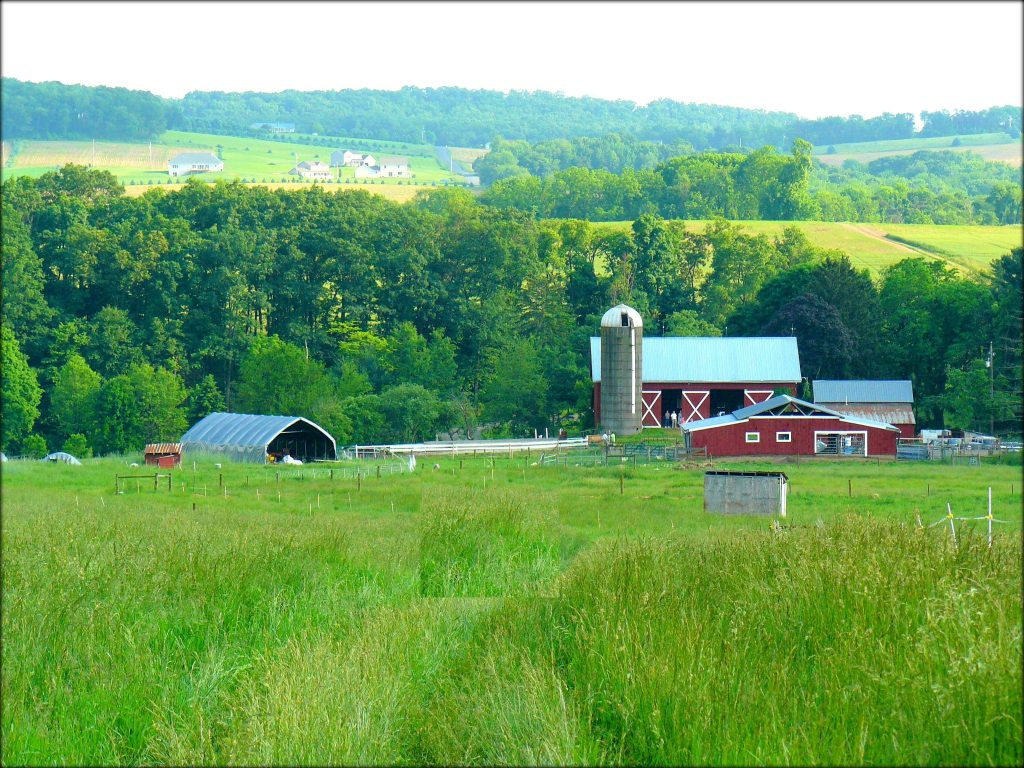 Owens Farm, Sunbury, Pennsylvania | Farm Stay USA