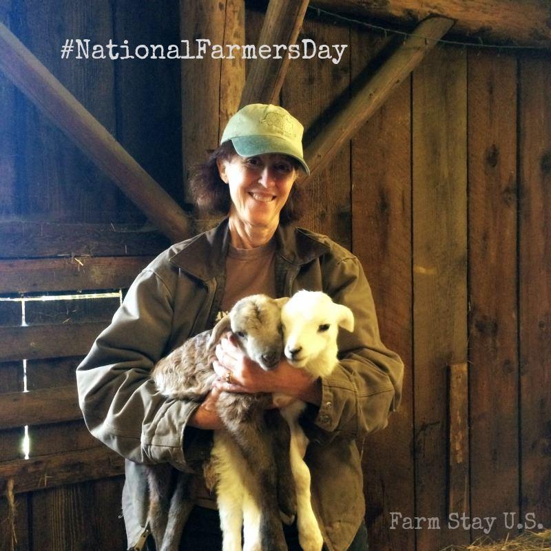 Leaping Lamb Farm, Alsea, Oregon | Farm Stay USA