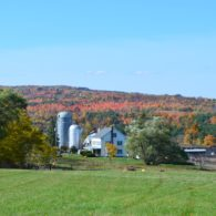 The beautiful fall at Hull-O Farms in the Catskills.