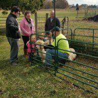 Hands on Farm tours