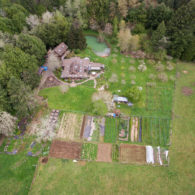 Myrtle Glen Farm is nestled within the lush coast range forest with a clear mountain stream cutting through the property.
