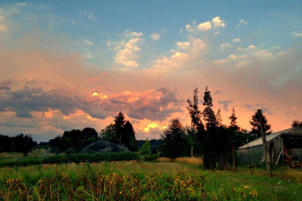 MoonRidge Farms, Beaverton, OR | Farm Stay USA
