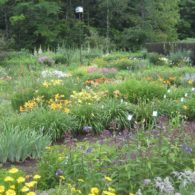 Labour of Love Landscaping and Nursery, Glover, VT | Farm Stay USA