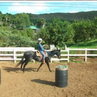 Directly across the road from our front entrance is Over the Rainbow Horse Stables. Robin offers trail rides, as well as Horse Interaction at a reasonable price.