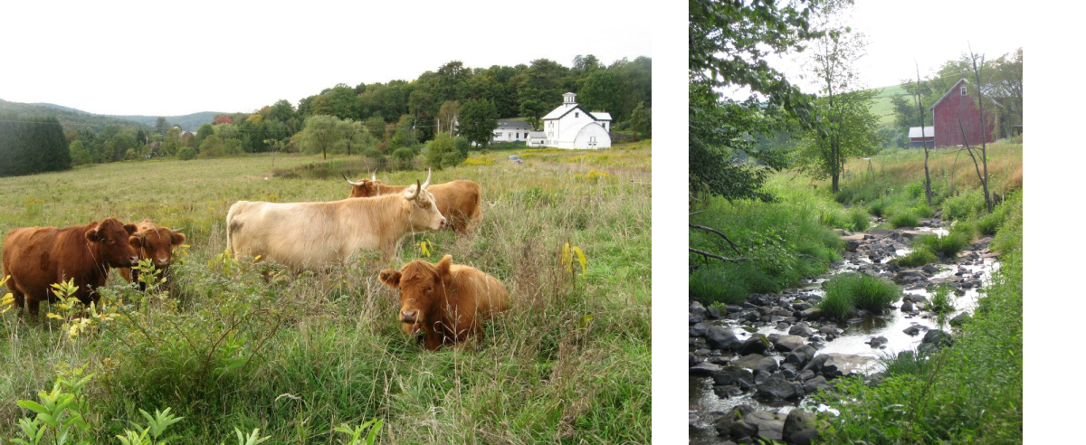 Stone & Thistle Farm, East Meredith, NY | FarmStay USA